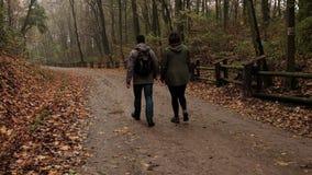 outono da floresta/parque após a chuva e o passeio irreconhecível dos povos Tiro estático vídeos de arquivo