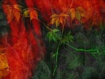 outono da pintura ilustração do vetor