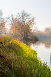 outono das proximidades do lago Imagem de Stock Royalty Free