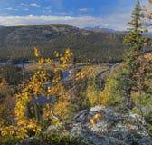 outono de Ural Fotografia de Stock