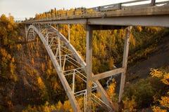 Outono do Gulch do furacão no parque nacional de Denali Fotos de Stock