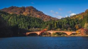 outono do lago Usui fotografia de stock royalty free