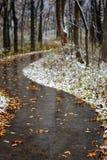 outono dos invernos imagem de stock royalty free