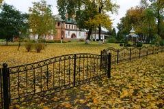 outono, outono dourado Fotos de Stock Royalty Free