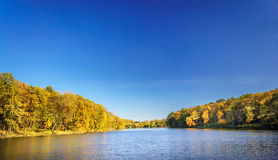 Outono dourado Fotos de Stock Royalty Free