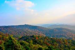 outono dourado em nanjing Imagens de Stock