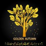Outono dourado Folhas sós da árvore e de outono Imagens de Stock Royalty Free