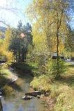 outono dourado na região de Altai em Rússia Paisagem bonita - estrada na floresta do outono foto de stock