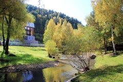 outono dourado na regi?o de Altai em R?ssia Paisagem bonita - estrada na floresta do outono foto de stock royalty free