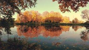 outono dourado no lago da floresta na noite filme