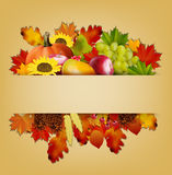 outono e fundo dos frutos Fotos de Stock