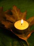 Outono e harmonia Foto de Stock