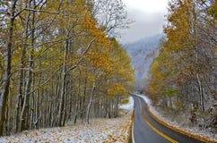 outono e inverno Fotos de Stock Royalty Free
