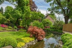 outono e manhãs frescas sobre os rios e as vilas em Alemanha fotos de stock