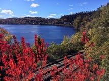 outono e trilhas velhas Imagens de Stock Royalty Free