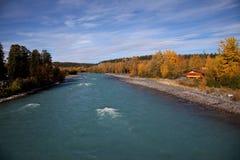 Outono em Alaska foto de stock