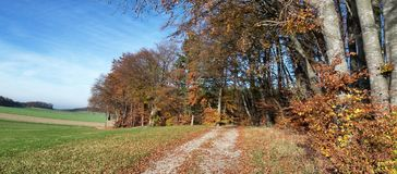 Outono em Baviera fotos de stock