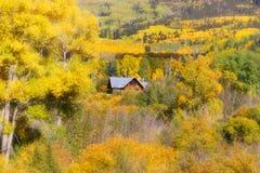 Outono em Colorado imagem de stock royalty free