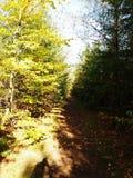 Outono em Dinamarca imagens de stock