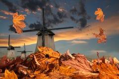 Outono em Holland fotos de stock royalty free
