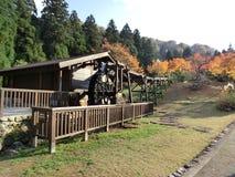 Outono em Japão Imagem de Stock Royalty Free