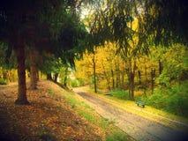 outono em Kiev Foto de Stock
