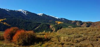 outono em Kirgizia Fotos de Stock Royalty Free