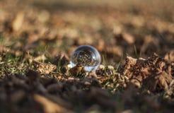 outono em Londres - uma vista - folhas secas e uma bola da lente fotos de stock