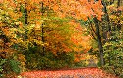outono em Michigan rural Imagem de Stock Royalty Free
