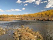 Outono em Mongolia Foto de Stock Royalty Free
