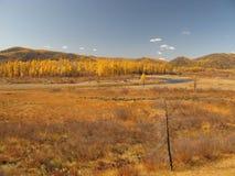 Outono em Mongolia Fotos de Stock