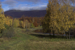 Outono em montanhas Carpathian fotografia de stock