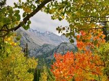 Outono em montanhas rochosas Fotos de Stock Royalty Free