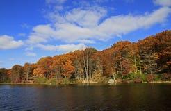Outono em New York Fotos de Stock Royalty Free