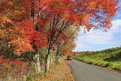 Outono em New York Imagens de Stock Royalty Free