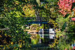 Outono em Nova Inglaterra Imagem de Stock Royalty Free