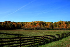 Outono em Ohio Foto de Stock