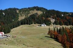 outono em outubro ao platô vermelho 4 da montanha imagens de stock