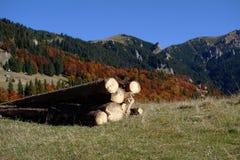 outono em outubro ao platô vermelho 2 da montanha fotografia de stock