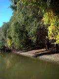 outono em outubro no arms& x28 do Danube River; channels& x29; 2 fotos de stock royalty free