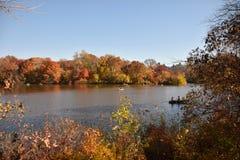 outono em pak central, New York Imagens de Stock