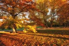 outono em Praga, parque favorito Letenske sady, República Checa de Letna do destino do turista imagens de stock royalty free