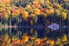 outono em Quebeque Imagens de Stock