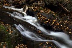 outono em Quebeque Fotografia de Stock Royalty Free