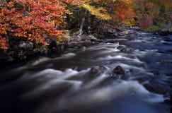 outono em Quebeque Imagens de Stock Royalty Free