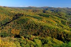 outono em Siebengebirge fotos de stock