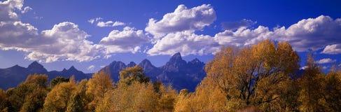 Outono em Tetons grande Foto de Stock Royalty Free