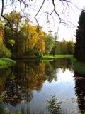Outono em um parque Foto de Stock Royalty Free