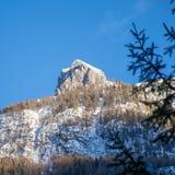 outono enviado com a primeira neve foto de stock royalty free
