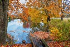outono grande do ribeiro imagem de stock